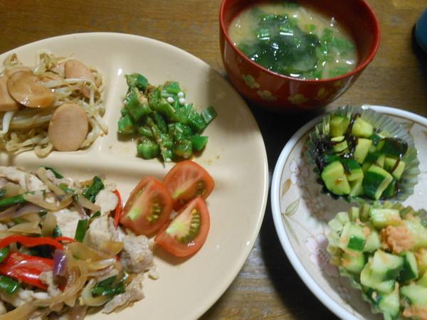 25日目の夕食