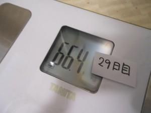 29日目の体重