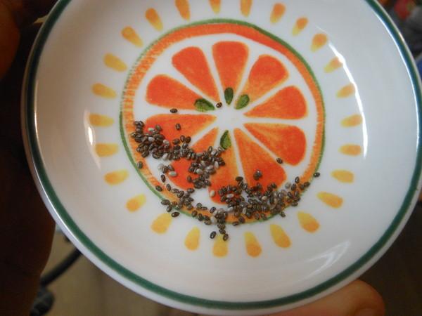 chia-seed (4)