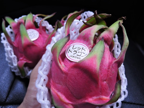 dragon-fruits (41)