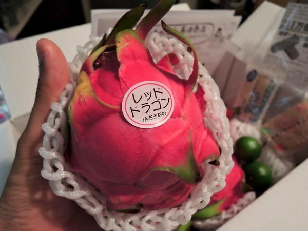 dragon-fruits (9)